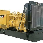 Cat1-150x150